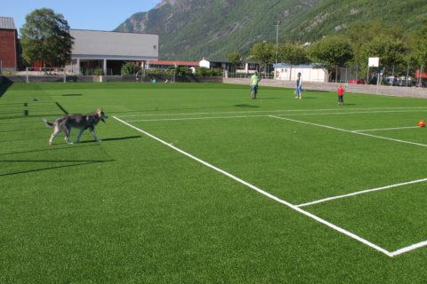 Kunstgressbane for fotball - Odda IL
